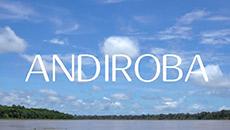 Ekos | Andiroba | Restauración de la piel